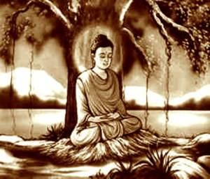 A Sombra do Bodhi