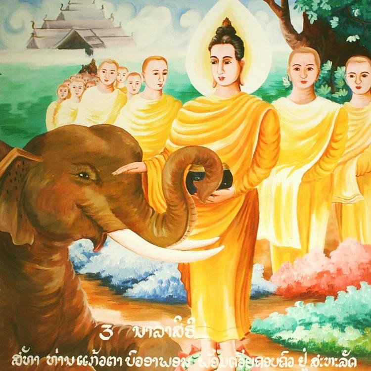 Buda com o Elefante Nalagiri